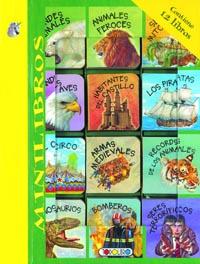 Minilibros (12 libritos)