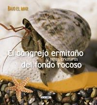 El cangrejo ermitaño y otras criaturas del fondo rocoso