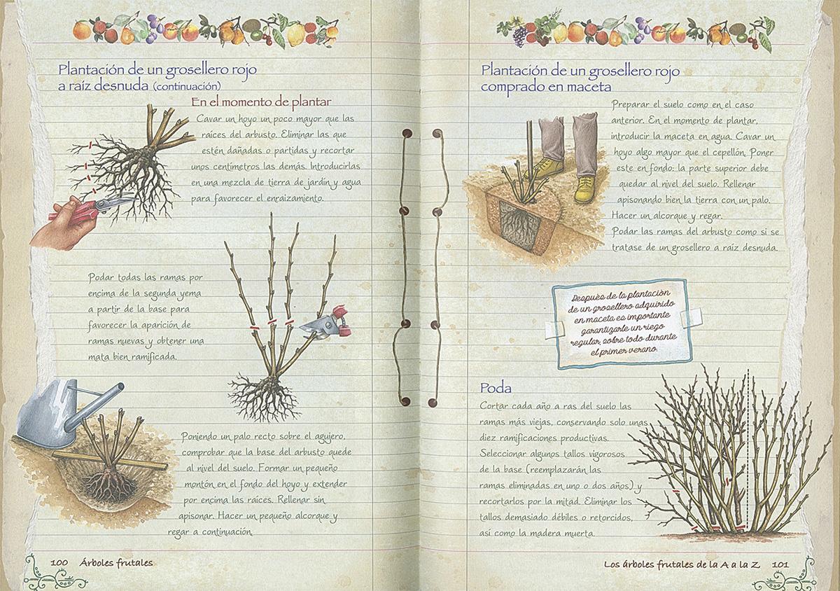Libros de jardiner a rustika todo libro libros for Libros sobre jardineria